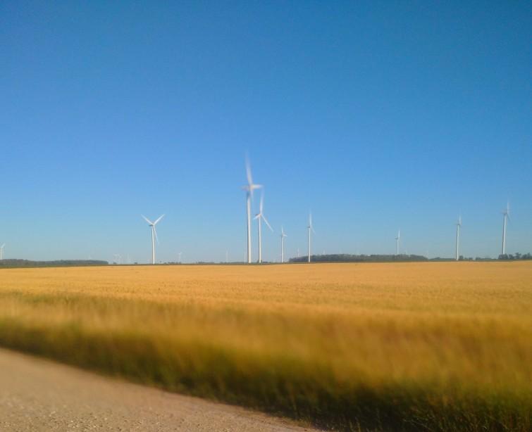 IMG_20180707_windmills