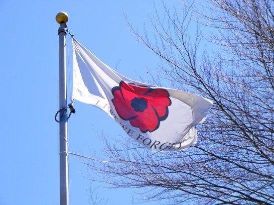 poppyflag