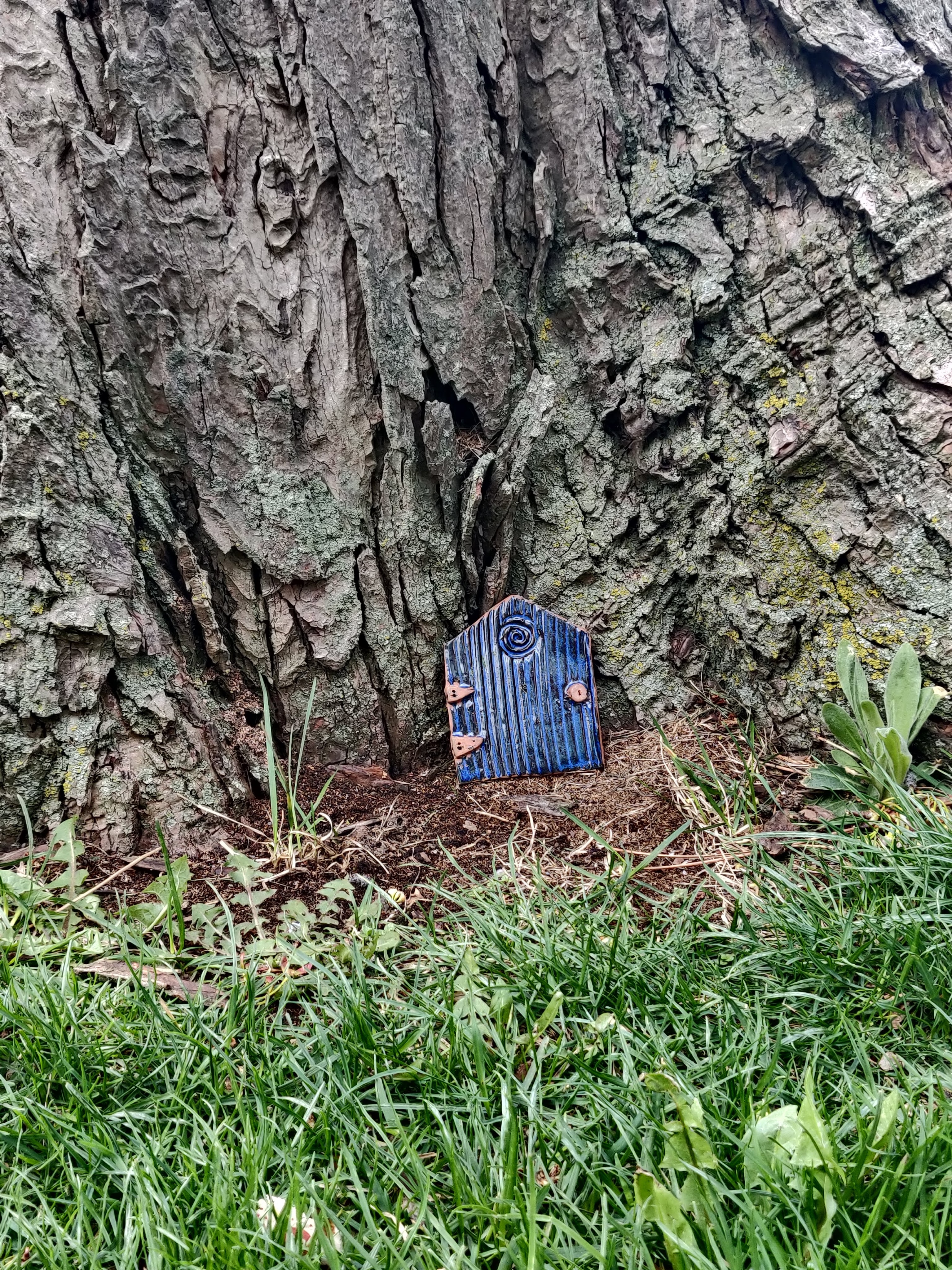 Tiny blue ceramic door resting against the trunk of a maple tree.