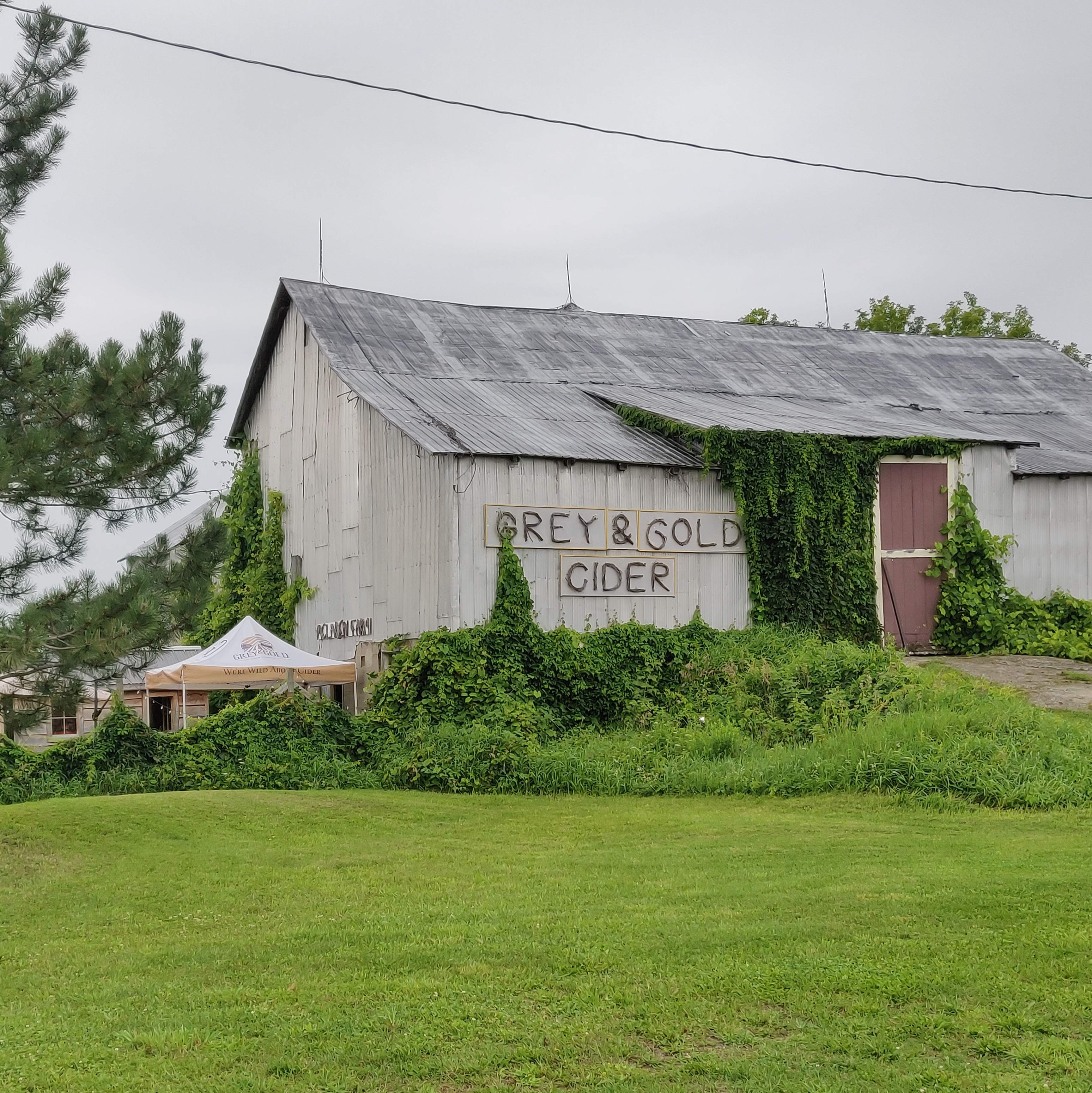 A white barn with a black roof. There are vines climbing up the sides, Gray & Gold Cider is on a sign on the side of the barn. To the left of the lower side of the barn is the customer tasting area and bottle room.